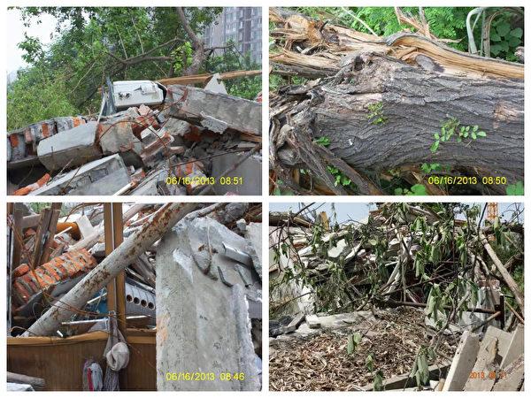王宇家2013年遭強拆,百年的大槐樹(右上圖)被毀。(受訪者提供)