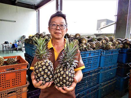 全台一半以上的純菠蘿餡料,都是來自八卦山上這家「六月旺來」。(黃玉燕/大紀元)
