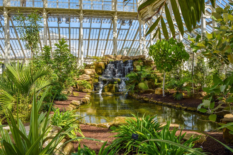 溫帶植物溫室內種植的植物。(Shutterstock)