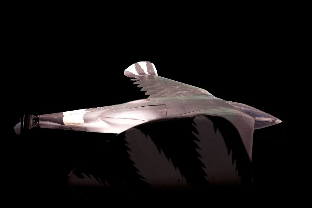 美國中央情報局(CIA)解密檔案顯示,上世紀60年代美蘇冷戰時期美國曾籌備「阿奎琳」無人機項目,打造12架鳥形且具核動力的無人偵查機以監控蘇聯行動。(CIA官網)