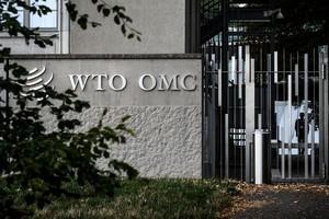 世貿裁決偏向中共 參議員:美應退出世貿