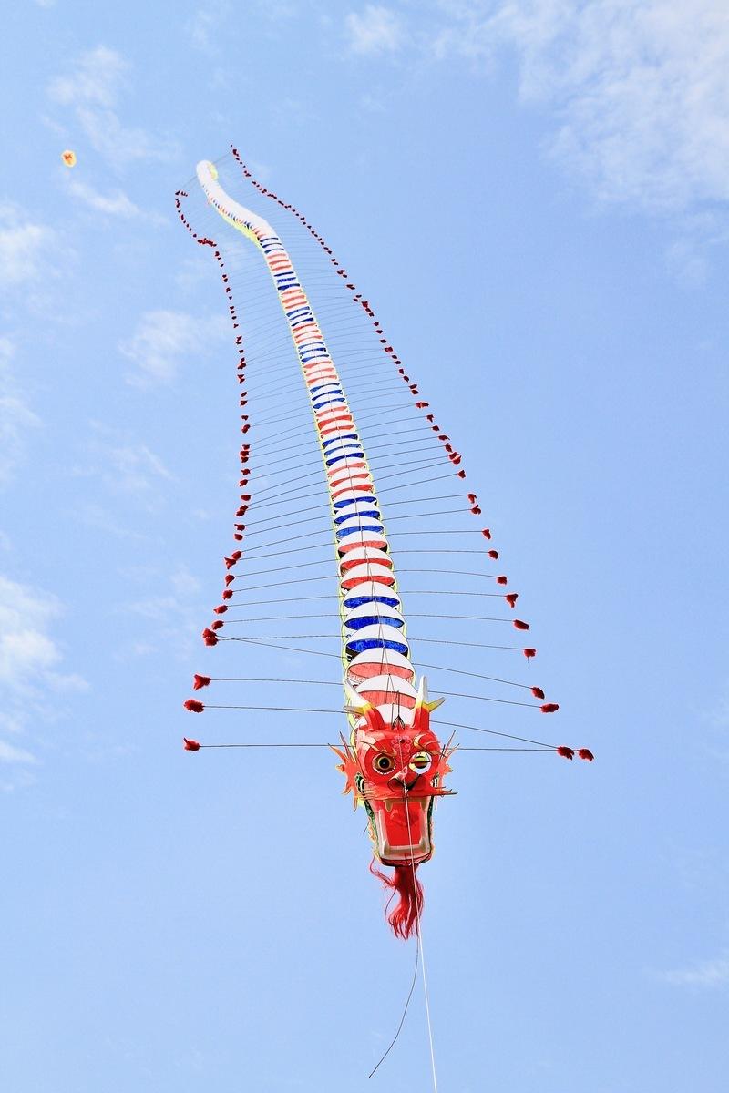 北京最近廣泛傳達一個文件,中共中央要求北京市民不得再擁有或操縱無人機、飛艇、無線電發報機。但是最荒誕的要求,則是禁止放風箏、養鴿子!圖:台灣苗栗風箏文化節上近百米長的「龍頭碗身」風箏翱翔天空。(許享富/大紀元)