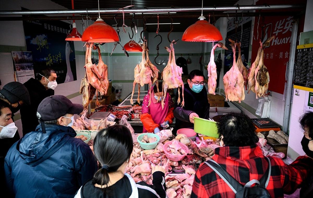 圖為2020年2月13日,位於上海某市場的一個禽肉攤點。(NOEL CELIS/AFP)