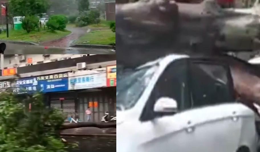 【影片】颱風米克拉登陸 福建漳浦等地狂風暴雨