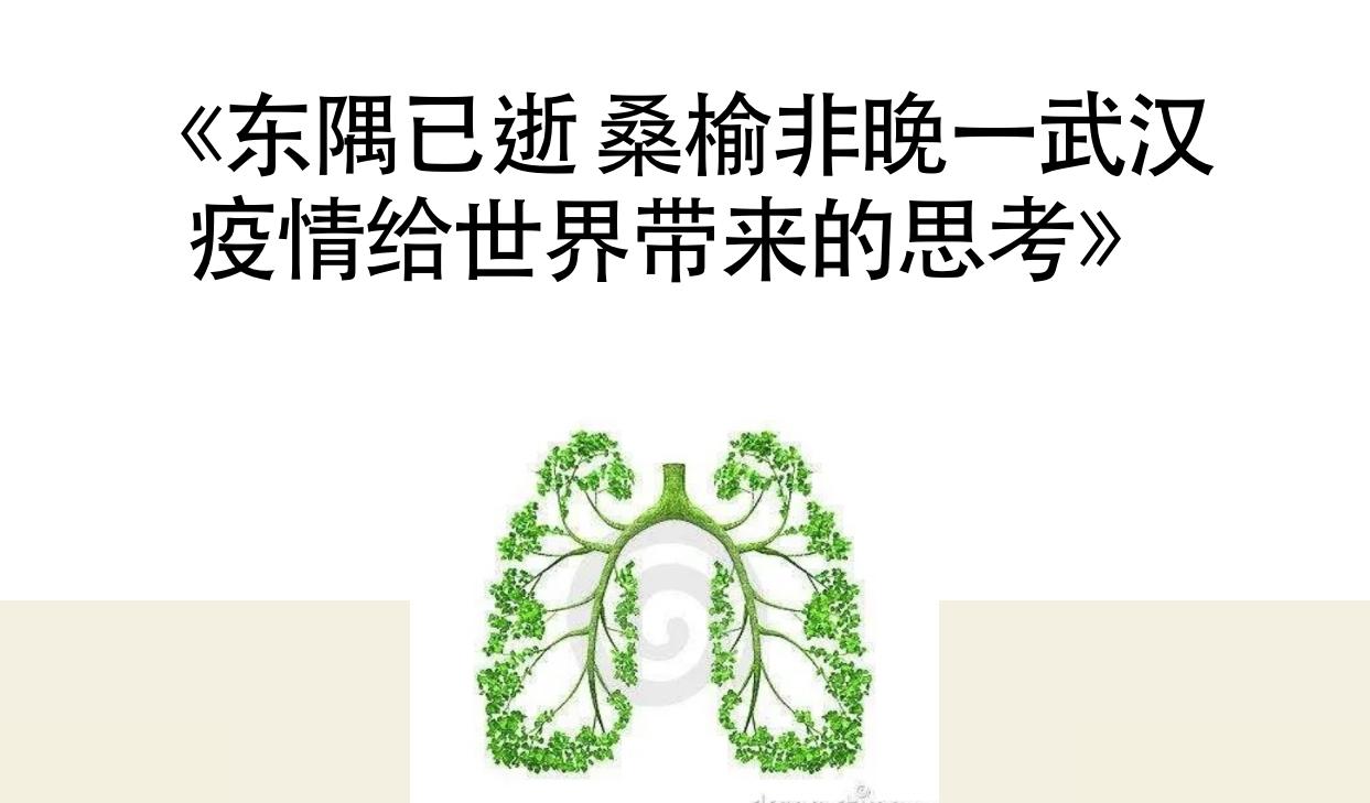 (羅碧雅的網站截圖)
