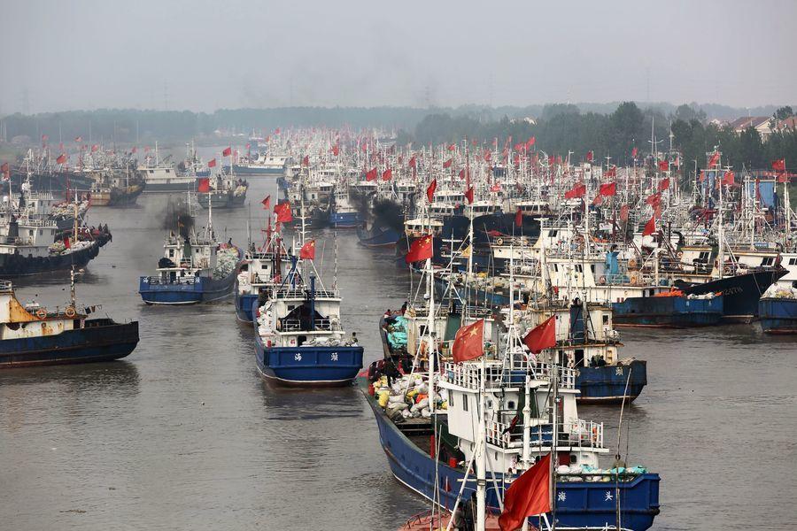 報告:中共縱容遠洋船隊濫捕撈的背後