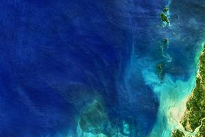 科學家也驚訝!人類免疫系統對這些深海細菌視而不見