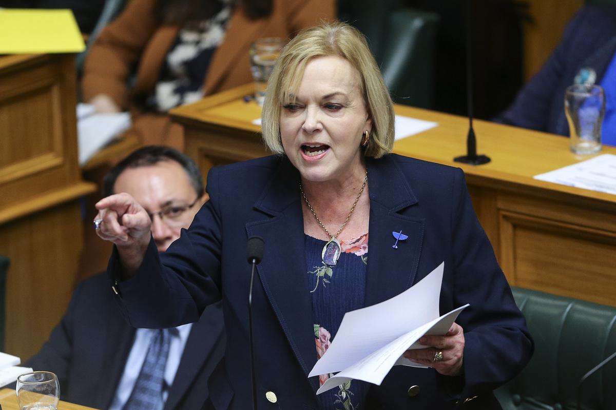 國家黨對政府的做法表示支持,但也警告說,在政府譴責中國(中共)後,紐西蘭可能會遭到中國(中共)的報復。圖為國家黨領袖柯林斯於2021年5月20日在紐西蘭威靈頓的議會2021年預算日發表講話。( Hagen Hopkins/Getty Images)