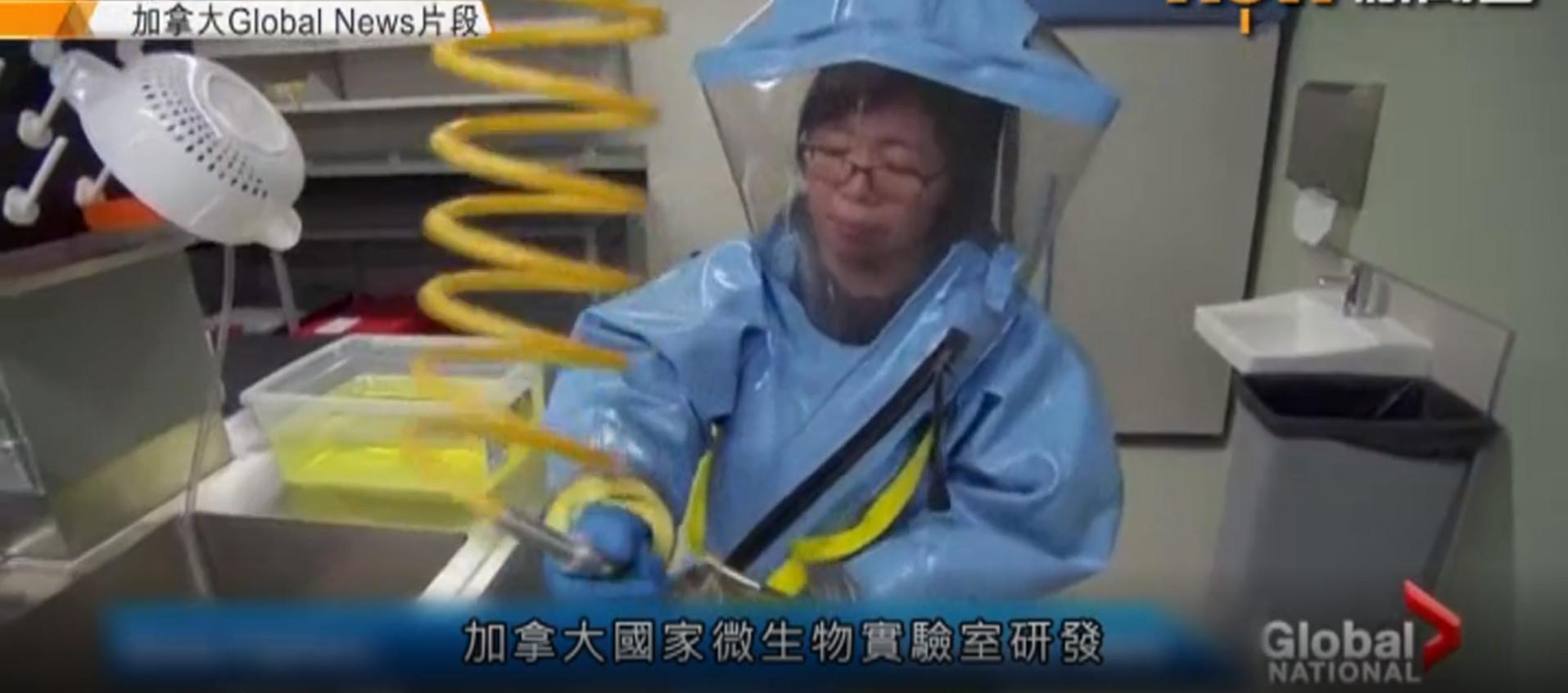 邱香果因涉嫌偷竊加國病毒樣本而被調查。(影片截圖)