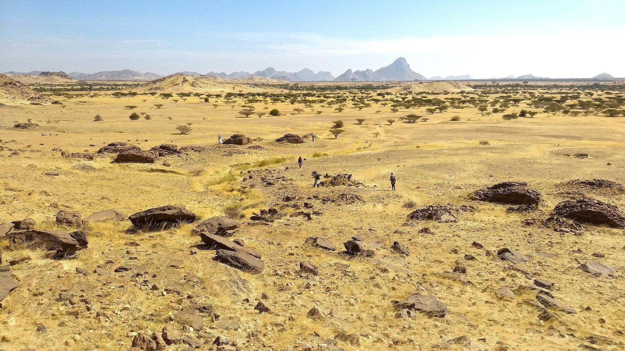 非洲伊斯蘭墓地遠景圖。(Stefano Costanzo)