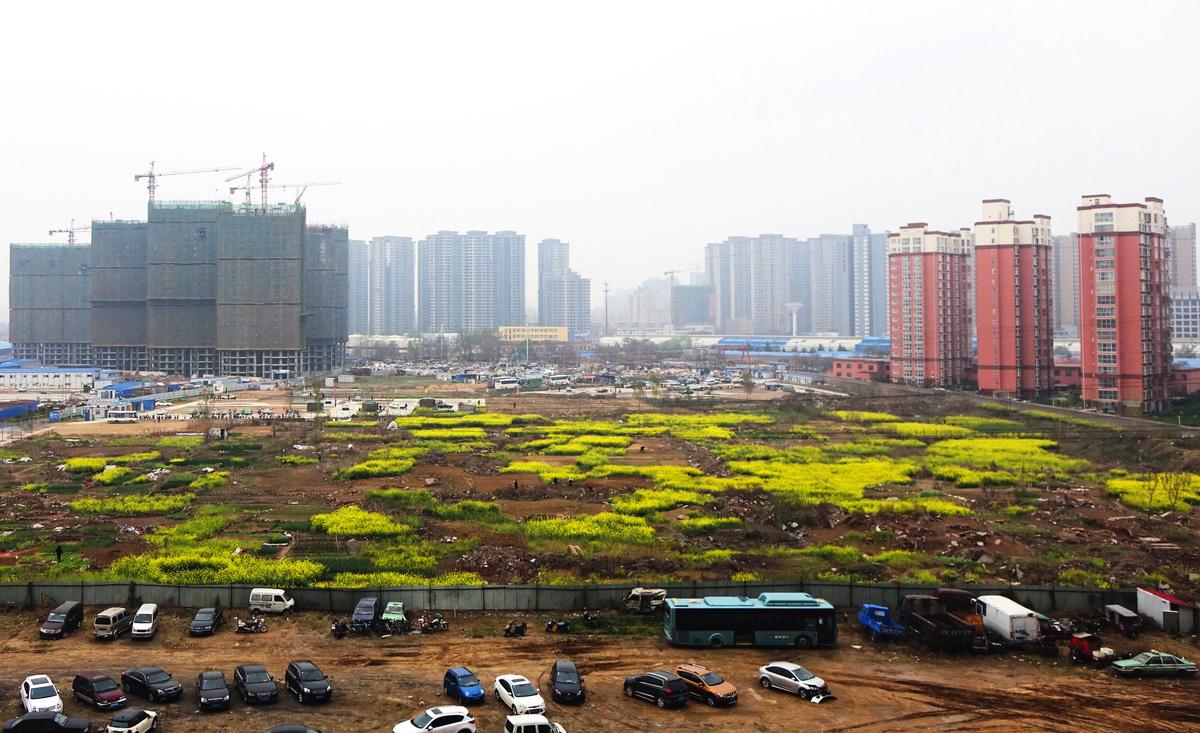 中國的城鎮化運動,佔用了大量耕地。1996~2006年,全國耕地減少了1.24億畝。圖為2015年4月03日在河南省鄭州市,城市擴張,佔用耕地。(大紀元資料室)