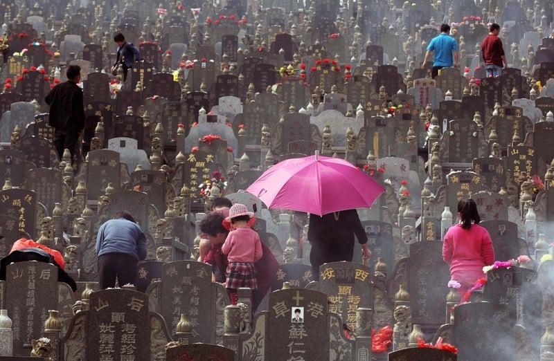 墓地亂象 為賺錢大陸農業生態園變陵園