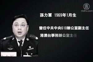落馬的公安副部長孫力軍 迫害法輪功內幕
