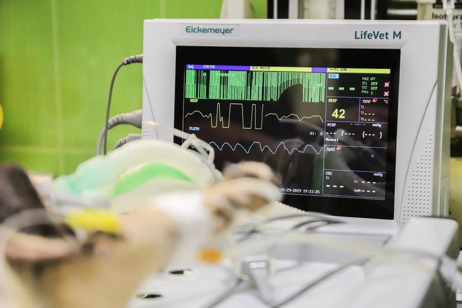 提早感應死亡 德國研發高靈敏度心臟雷達
