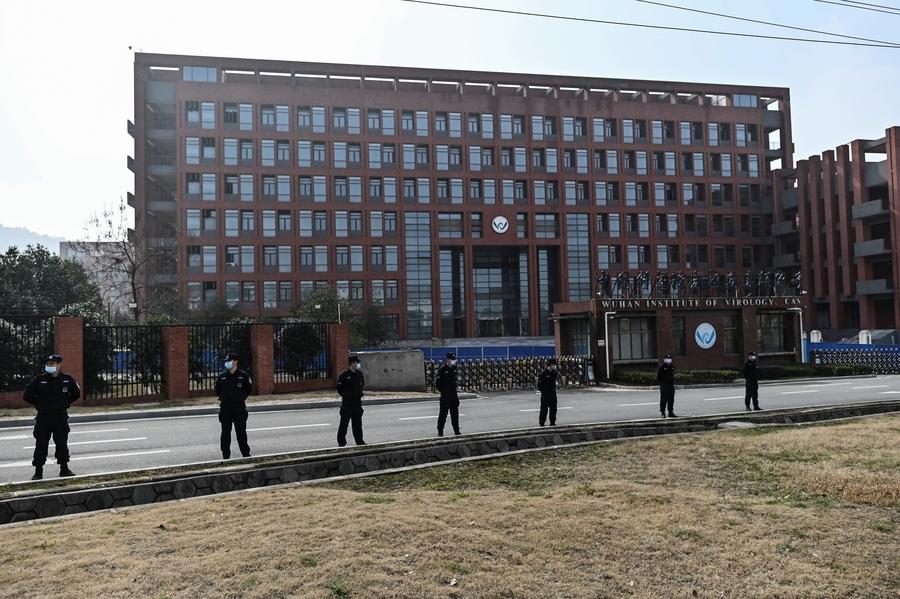 武漢病毒研究所15資料庫斷線 疑隱匿病毒起源