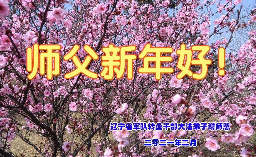 遼寧省軍隊轉業幹部大法弟子祝師父新年好!(明慧網)