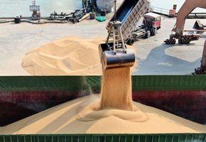 談判前 傳中方對五中企買美大豆免關稅