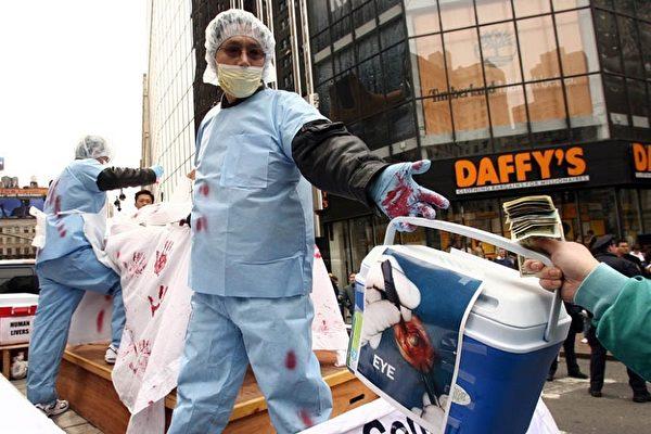法輪功學員在紐約曼哈頓中城舉行盛大遊行,圖為揭露中共活摘販賣法輪功學員器官的罪行演示 。(大紀元)