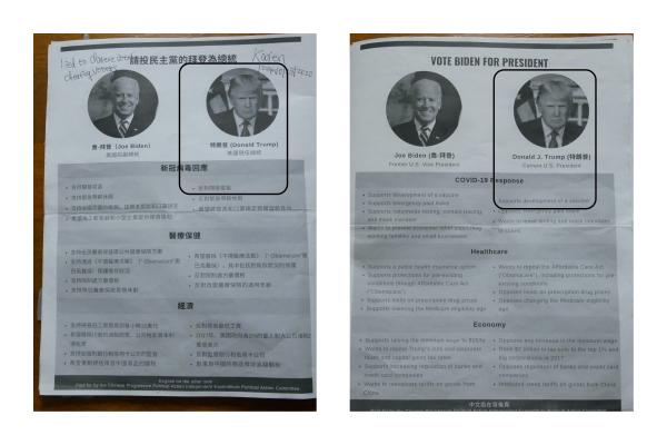 美國波士頓「華人協選會IEPAC」給華人選民提供的大選資料中,中文部份寫,特朗普反對開發疫苗;英文部份寫,特朗普支持開發疫苗。(李辰/大紀元)