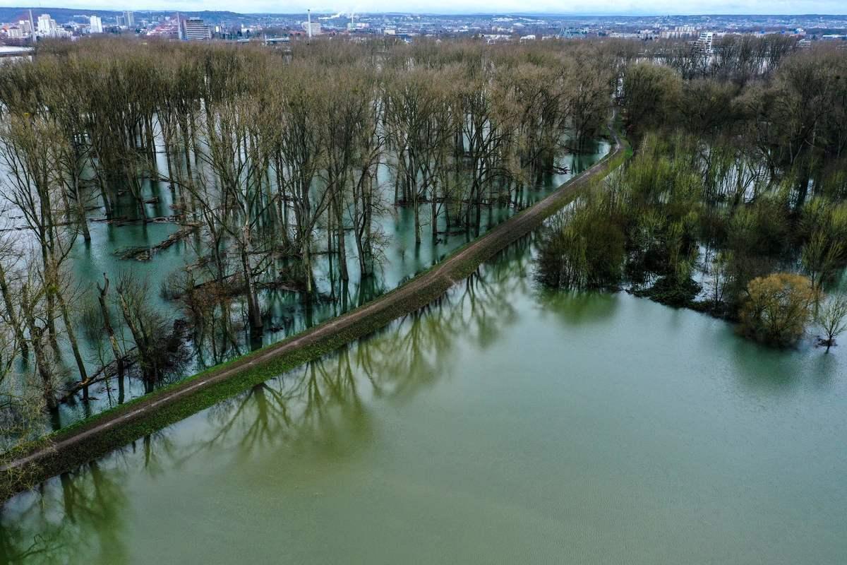 2021年2月3日,德國蒙多夫(Mondorf),西格河(Sieg river)氾濫,樹林遭水淹沒。(INA FASSBENDER/AFP via Getty Images)