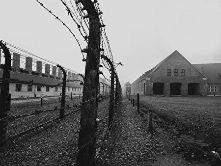 奧斯維辛集中營的電網。(Erhan 191/Shutterstock)