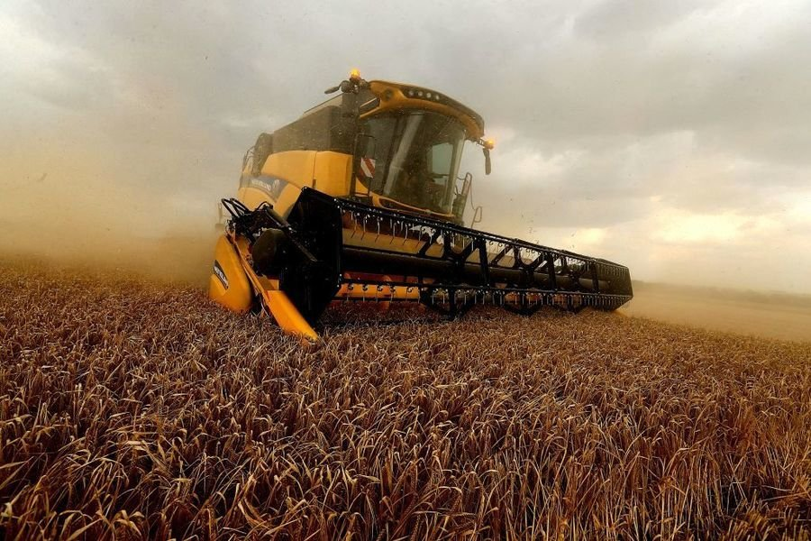 對澳洲大麥做反傾銷調查 中共被疑政治報復