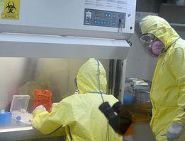 北京確診2人染鼠疫 病源成謎 民眾恐慌