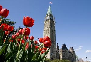 2009年,加拿大成立全球首個國會法輪功之友。(大紀元資料圖片)