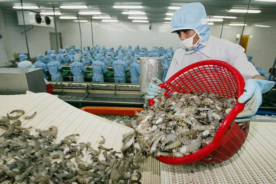 中共以蝦感染為由拒接收千個貨櫃 印度抗議【影片】