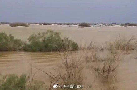 塔克拉瑪干沙漠現洪災 中石化三萬套設備被淹