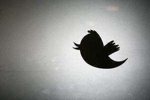 內幕:中共如何獲取推特帳號 進行虛假宣傳