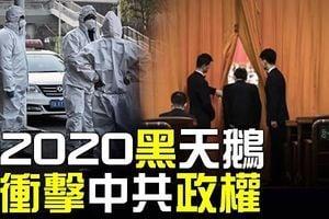 周曉輝:崔天凱露怯 納瓦羅向北京傳重磅信號