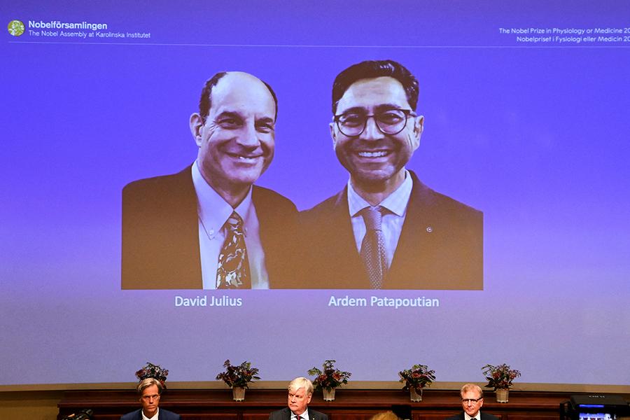 2021諾貝爾醫獎帶來止痛福音?仍面臨2大挑戰
