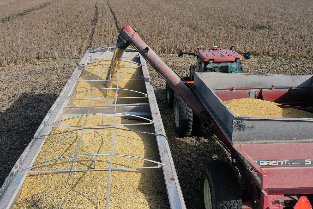 最近兩周中共向美國購買大批農產品。( Joe Raedle/Getty Images)