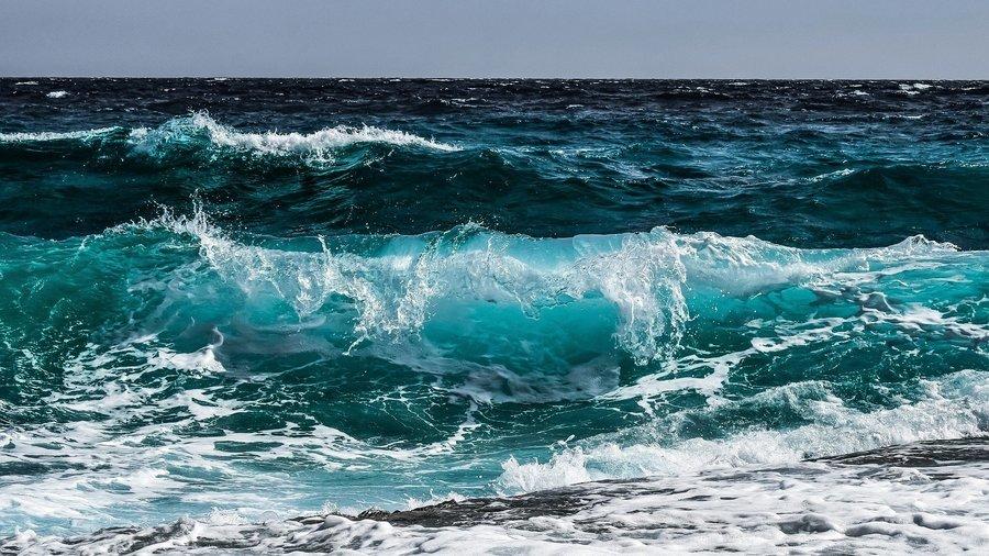 完成臨終病人願望 澳洲醫務人員帶她去看海