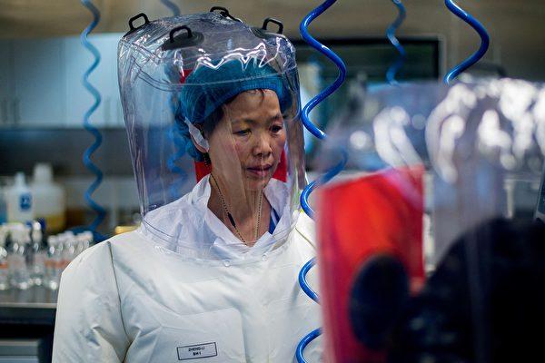2017年2月23日,石正麗在武漢P4實驗室。 (JOHANNES EISELE/AFP via Getty Images)