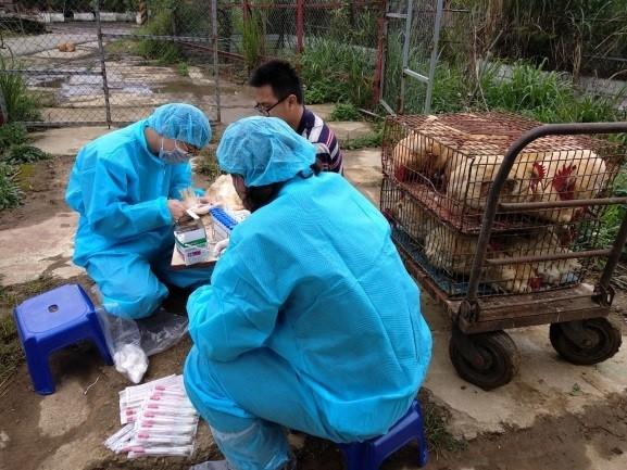 中共肺炎防疫 台專家:貓犬不會感染中共肺炎