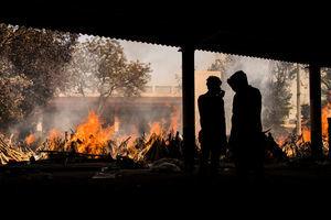 印度單日35萬染疫 鄰國封鎖 多國禁運