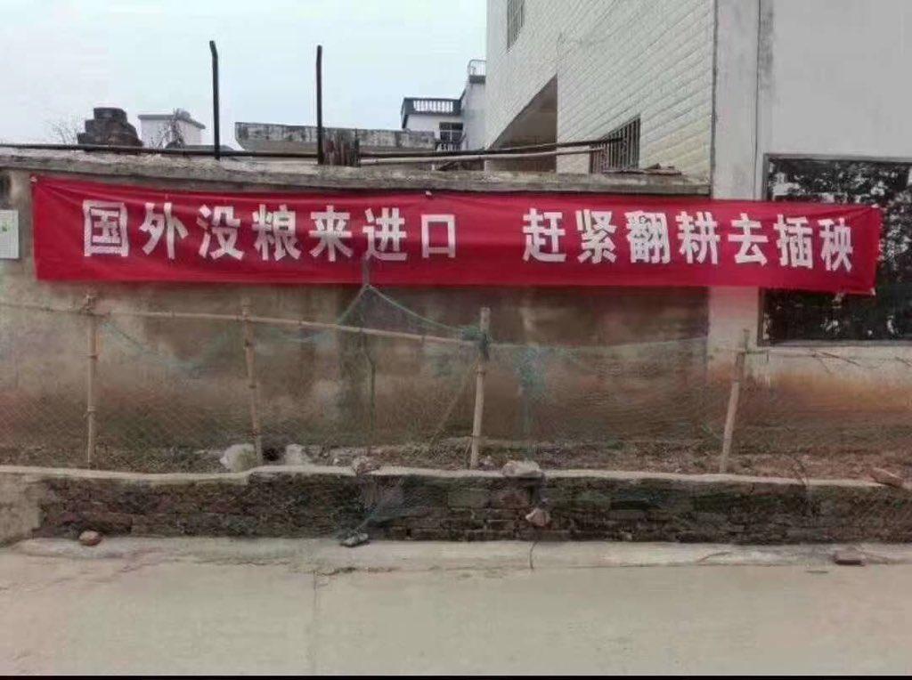 近日各國紛紛開始管制糧食出口。有大陸學者警告,三個月內不動員種糧,中國恐現糧荒。(網絡圖片)