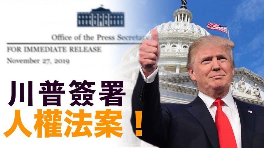 王友群:「香港人權法」有助香港國際地位
