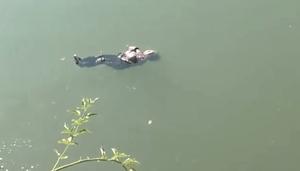 太淡定了 湖南87歲老婦墜河後抱臂漂浮獲