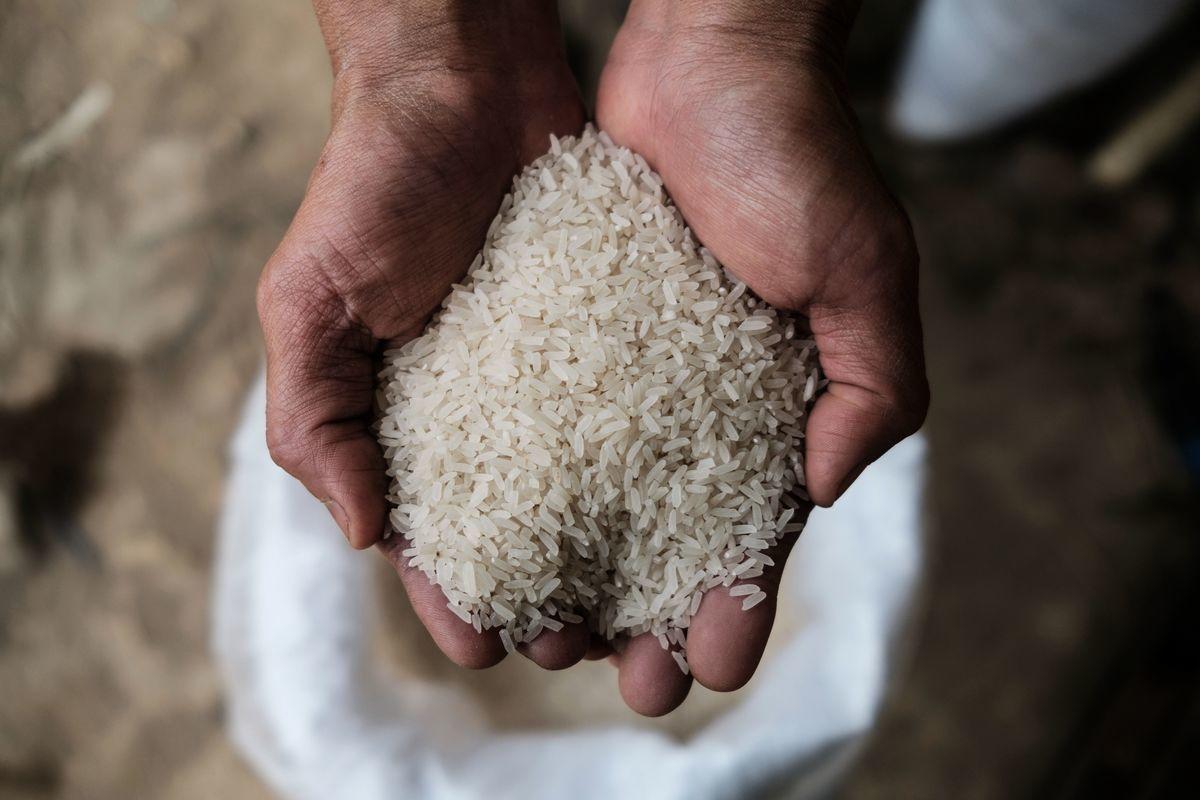 中共正在全球大肆採購粟米、大麥等糧食。圖為資料圖。(Photo by ANTHONY WALLACE/AFP via Getty Images)