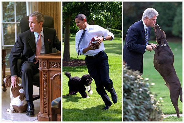 美國前任總統小布殊、克林頓和現任總統奧巴馬(中)在白宮與愛犬一起。(Getty Images/大紀元合成圖)