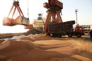 關稅壓力下 年底前中方或宣佈進口美大豆