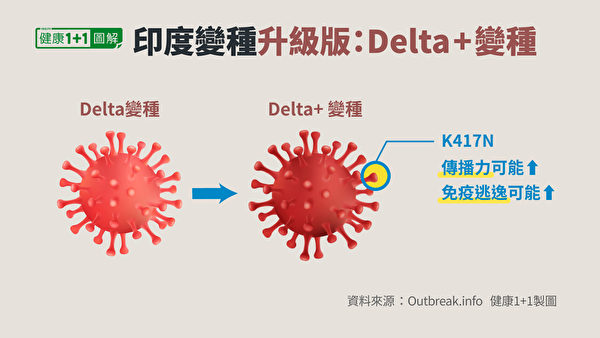 Delta Plus在刺突蛋白髮生了K417N突變。(健康1+1/大紀元)