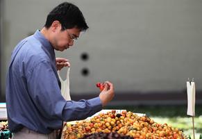 中國人吃車厘子 也得聽中共政治導向?