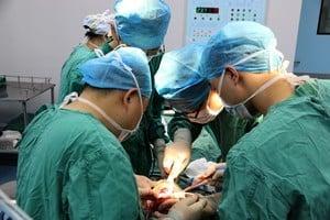《自然》十大科學家 揭中共強摘器官者入列