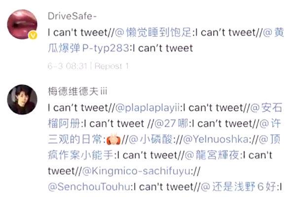 諷刺華春瑩 大陸網民微博洗版:我不能發推
