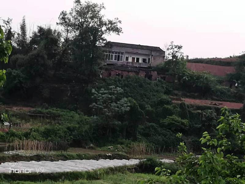 重慶當局強拆民宅 91歲老人路死街頭