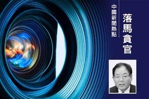 退休近四年 天津武清區法院前院長張林才被查